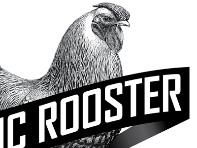 Rooster rooster black and white