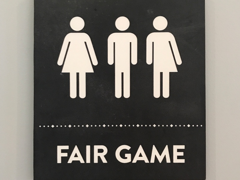 Fair Game inclusive bathroom restroom bathroom inclusive