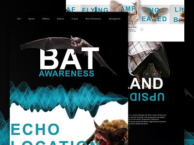 Mocktober - Bat Awareness web nonprofit non profit bats sound education mocktober