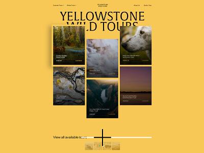 Yellowstone Wild Tours type clean landing ui nature travel tourism tours wildlife