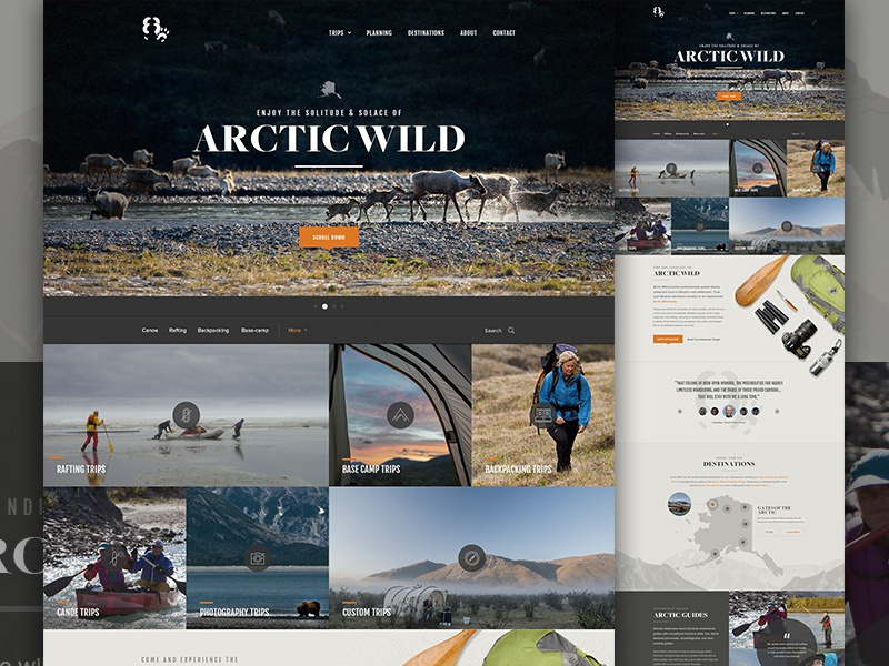 Arctic Wild filter elegant seagulls travel trip nature map sort planning icon grid photography explore