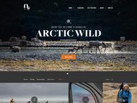 Arctic pixels