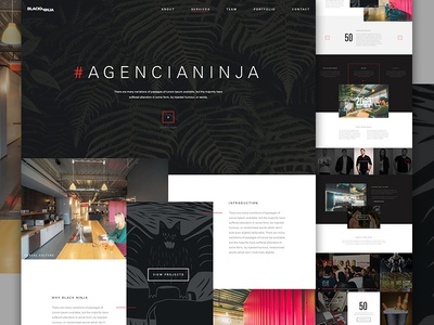 Black Ninja  elegant seagull web grid exploded grid type dark agency ninja one page landing