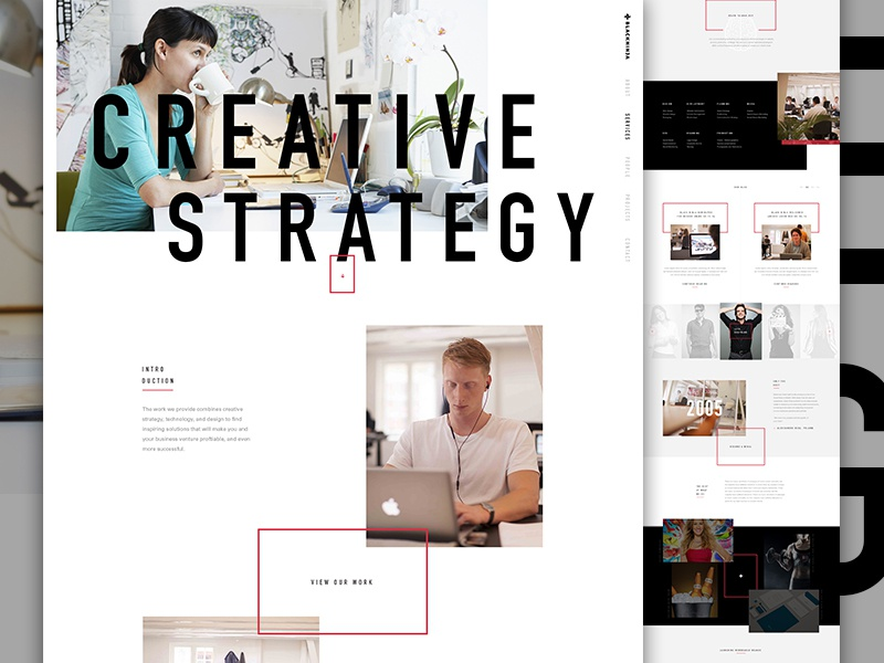 Black Ninja Final team elegant seagulls grid exploded grid agency one page landing white portfolio web type vertical type