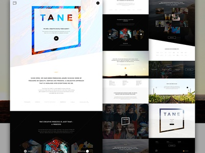 TANE Pitch long scroll contrast exploded grid landing team mask agency portfolio hexagon angle video elegant seagulls