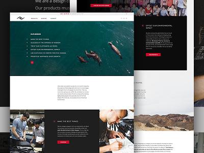 Peak Mission seals photography clean mission story shop ecommerce e-commerce elegant seagulls