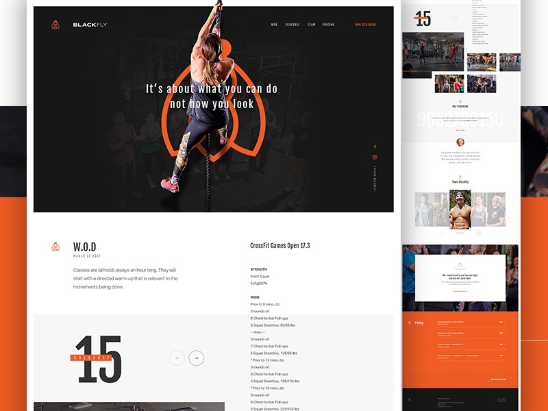 BlackFly CrossFit art direction one page athlete gym pattern sports fitness landing crossfit elegant seagulls