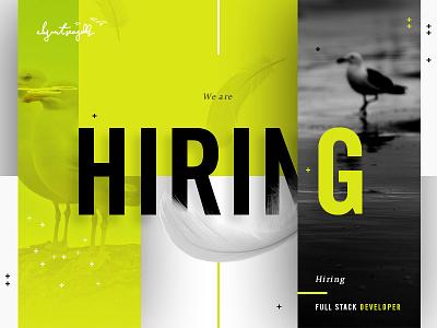 We're Hiring full stack developer green seagulls hiring