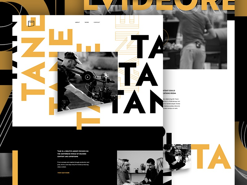Tane Concept 1 website whitespace typography type agency landing page agency video