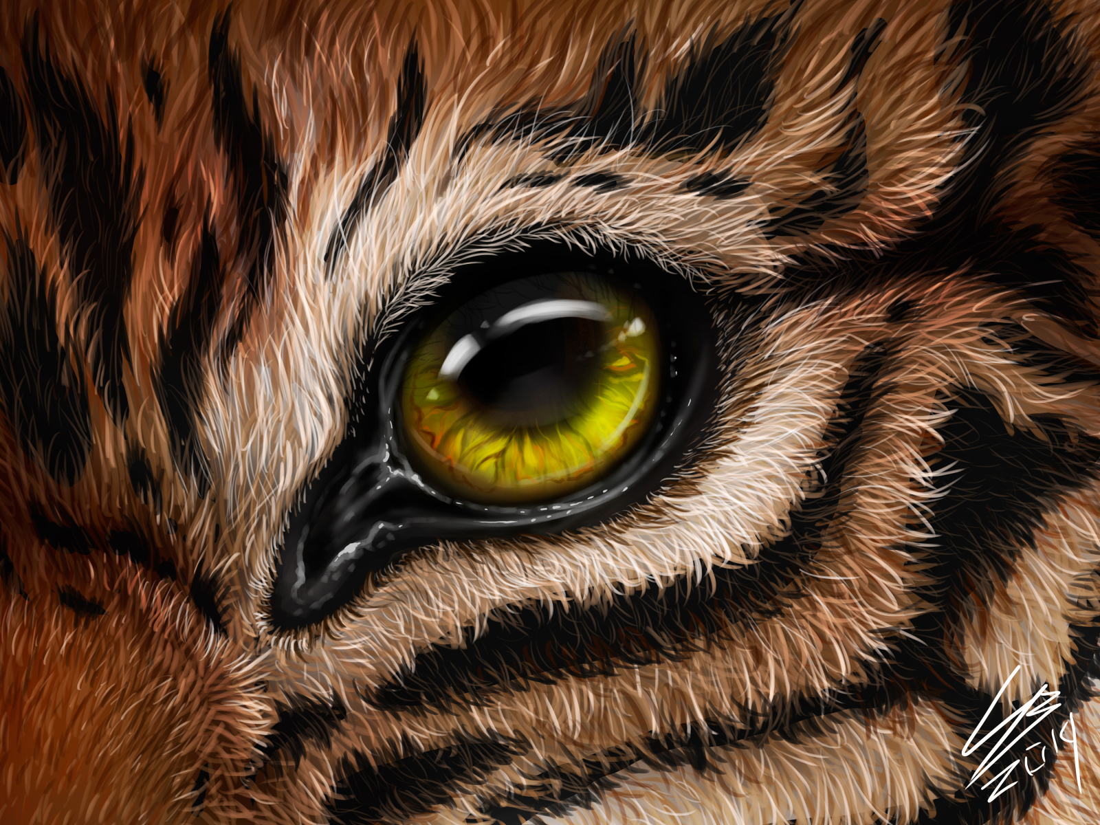 Tiger S Eye By Victoria Sokolova On Dribbble