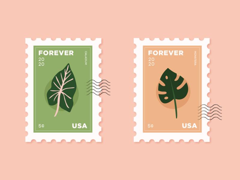 Plant Stamps vector illustration usps postage stamps stamp vector plants plant caladium monstera