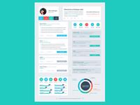 Resume Flat Design Timeline