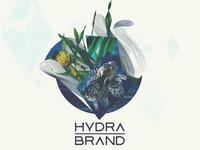 Hydra Brand Logotype