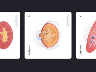 Google Health vector health medical kidney lung eye design google illustration