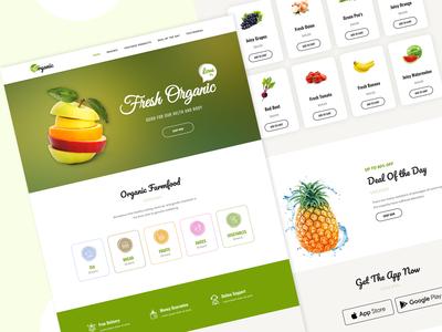 Organic Food   WordPress Elementor Theme