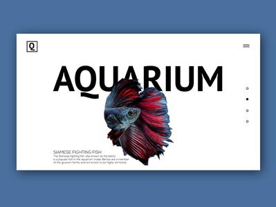 Aquarium version 2.0
