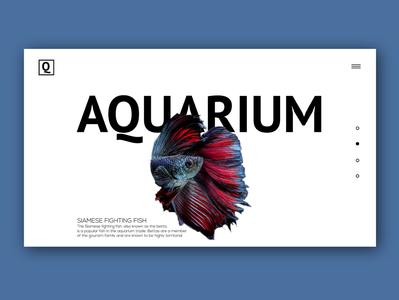 Aquarium version 2.0