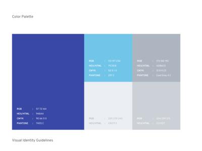 Color Palette for Branding