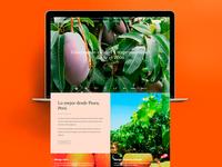 Navarro Fruits: Home