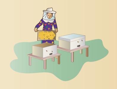 The BeeKeeper vector bhajumahesh nepali design design creative design beekeeper creativecommunications