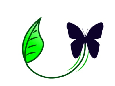Butterfly drawing nature illustration creative vectordesign vectorillustration art drawing vector