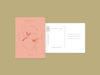 Moveable Feast + Company postcard