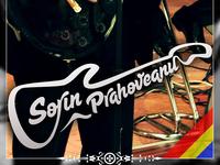 Logo Design: Guitar Singer