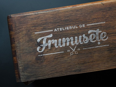 Logo: Atelierul de frumusețe branding logo design hair salon logo design handlettering calligraphy
