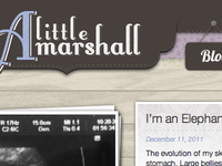 www.littlemarshall.com