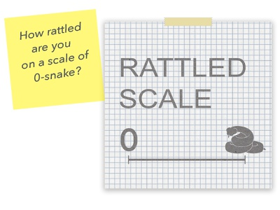Rattled Scale infographic design data visualization infographic layout design typography minimalist illustration art illustration adobe photoshop drawing graphic design digital art design