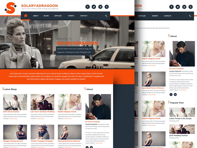 FREE SolaryaDragoon Web PSD parallax background magazine grid blog home psd ui website freebies free
