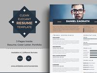 Clean Elegant Resume/CV Template