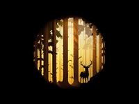Deep Forest illustration
