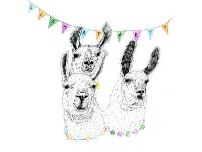 llama party llama party illustration