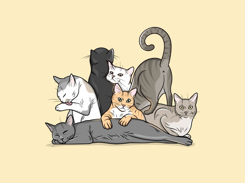Cats drawing illustration animal kitten cat