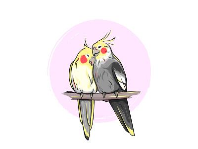 Parrots illustration drawing cute love cockatiel corella love birds bird parrot