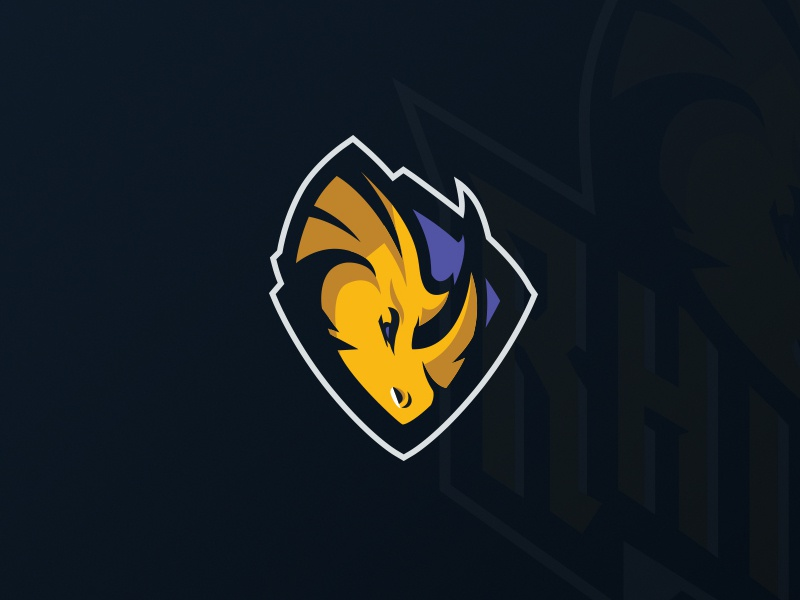 Rhino Logo Shield switzerland nfl rhinos rhino football sport logo