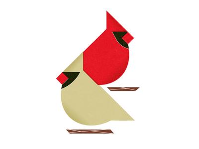 Cardinals chirp illustration birds cardinal state bird indiana