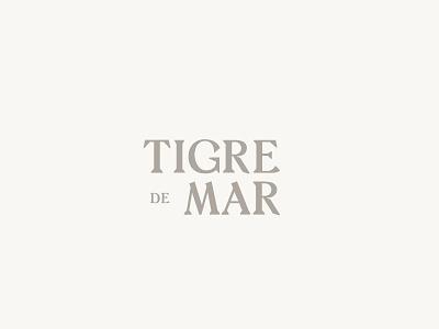 Tigre de Mar identity beach ebikes branding mexico tulum electric bikes