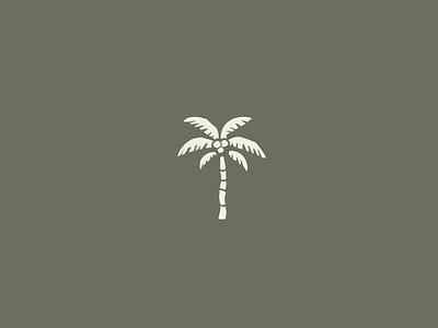 Tigre de Mar. TULUM tropical palm mexico tulum beach electric bike