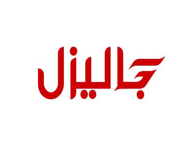 Galizle logo