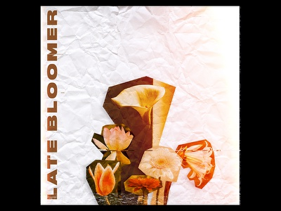 Late Bloomer v2 song cover album artwork bloom flower