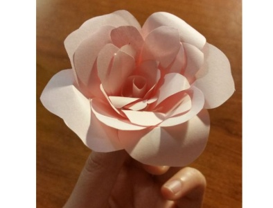 Hand-made Rose
