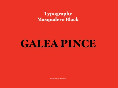 Branding & Identity branding identity branding typography graphicdesign logotype typeface