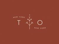 NY TO NY