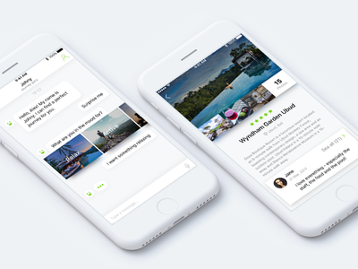 Travel Chatbot ios booking app ui ux ai animation travel bot chat