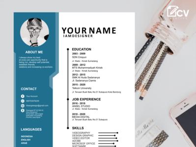 Design Services for Job Application Cv design