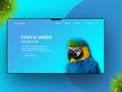 Exotic Bird Exhibition / Landing Page concept photoshop white blue web design exhibition birds webdesign ux ui landing firstscreen firstshot education