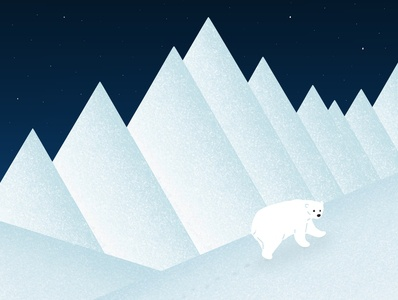 Polar bear design art illustrator gallery dribbble galshir artist digitalart procreate illustration