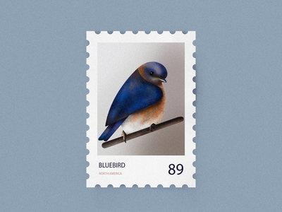 Bluebird postcard stamp nature icon flat vector 2d illustration graphic design pastel colors 89 north america bird bluebird